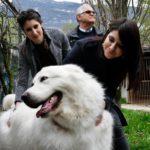 """Trento, il cane Miro tornerà in libertà: """"Abbiamo vinto tutti""""."""